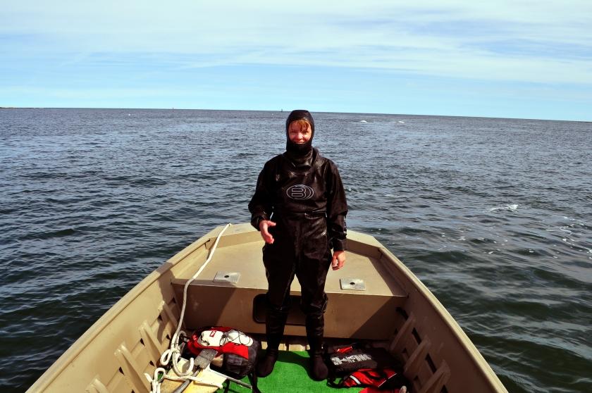 Schnorcheln mit Belugas in der Hudson Bay