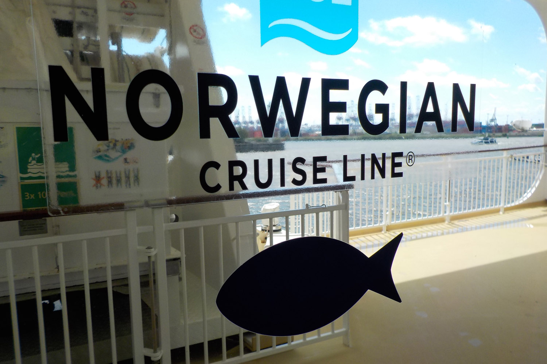 Cruse Ship in Hamburg