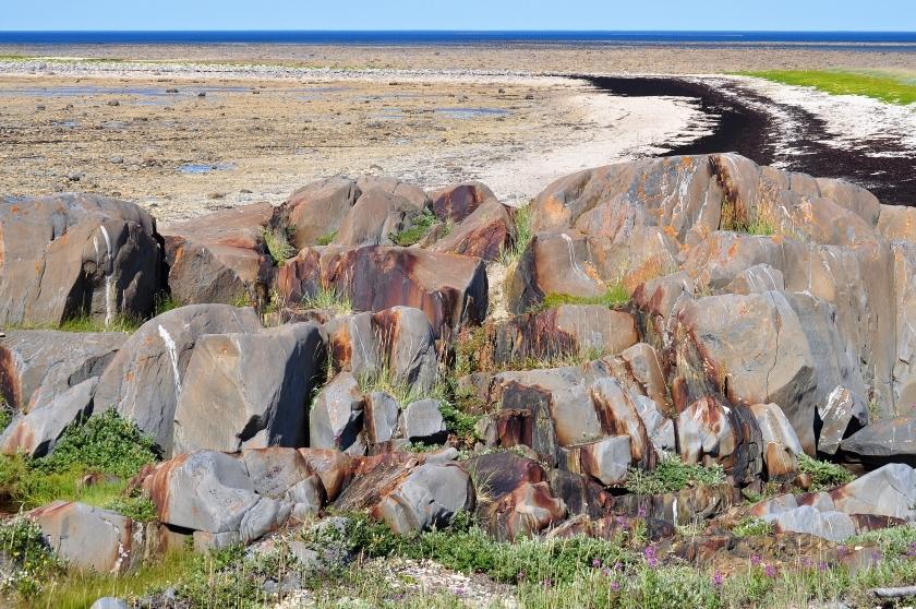 Felsenlandschaft in der Tundra bei Churchill