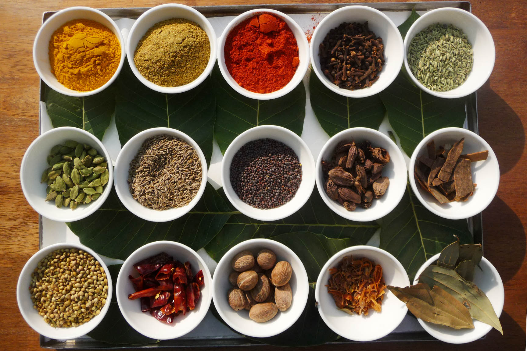the spices of India ©Regina Fischer-Cohen