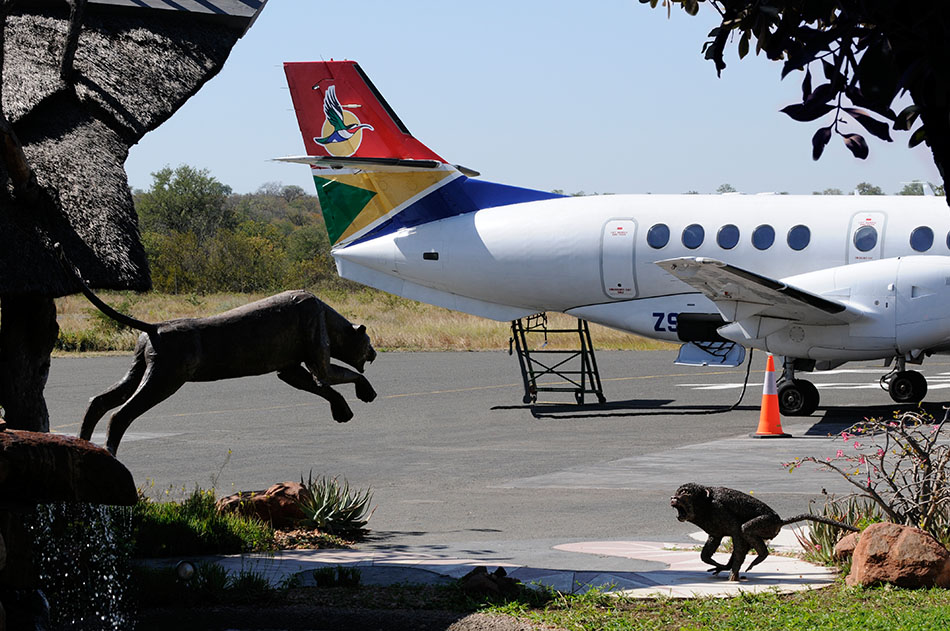 South African Airways, kurz SAA