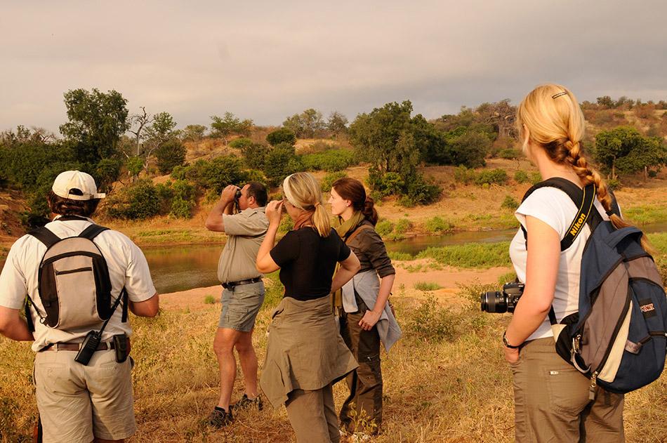Walking-Safari - Allein auf weiter Flur in der Wildnis